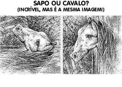 Cavalo ou sapo?